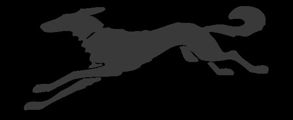 Knopf Logo